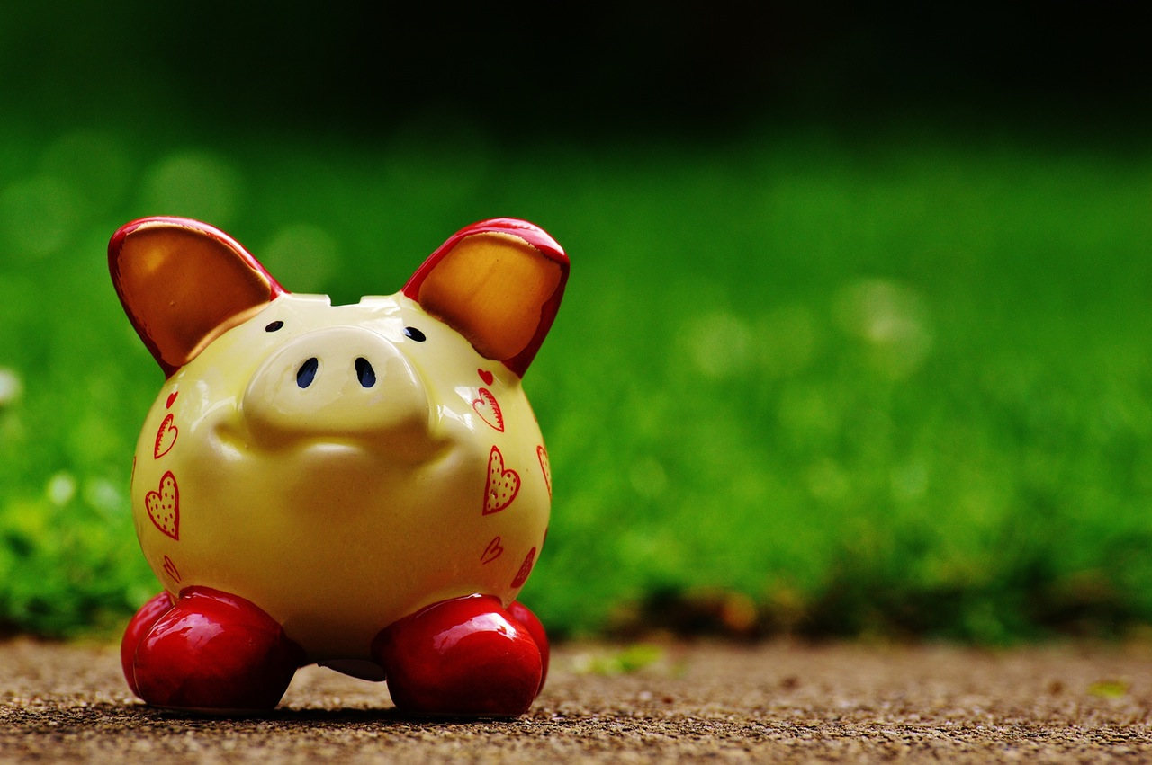 Create a monthly budget for yourself and your family.