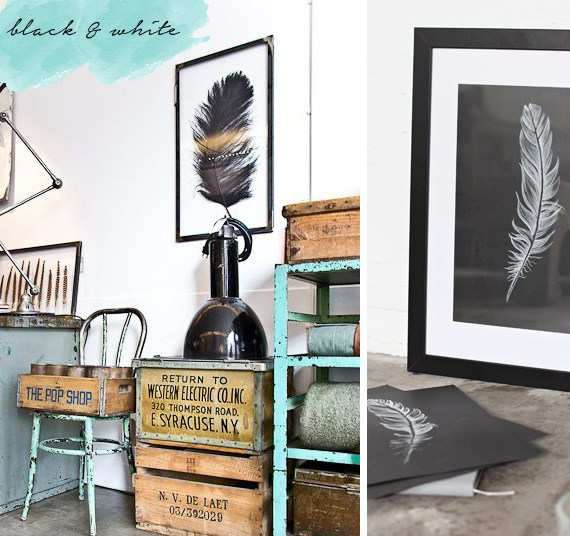 Framed feather prints in black and white make an a impressive statement.