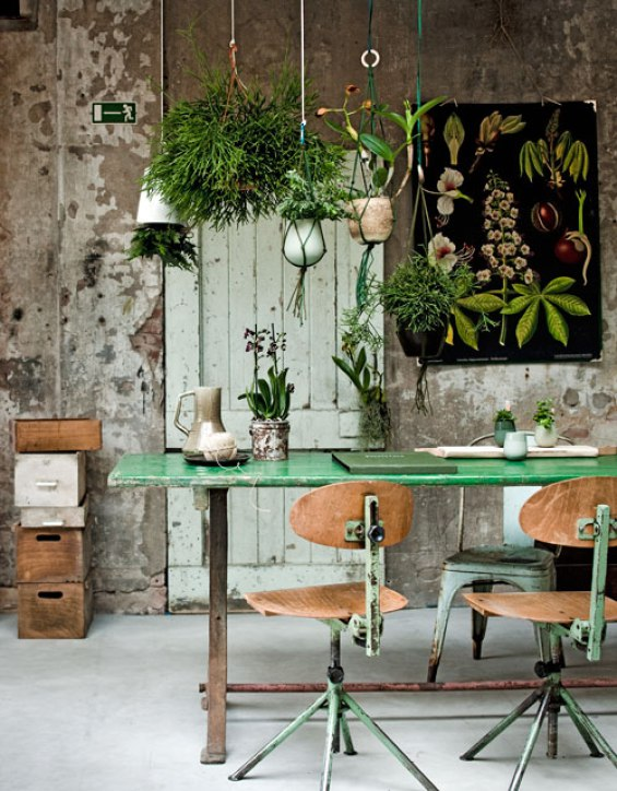 Botanical plants give life to an industrial setting
