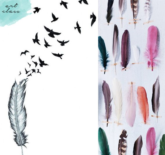Beautiful feather drawings and feathers on wall with tape