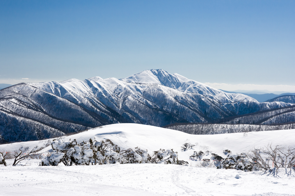 In Victoria's lush Alpine country is Mt Hotham.