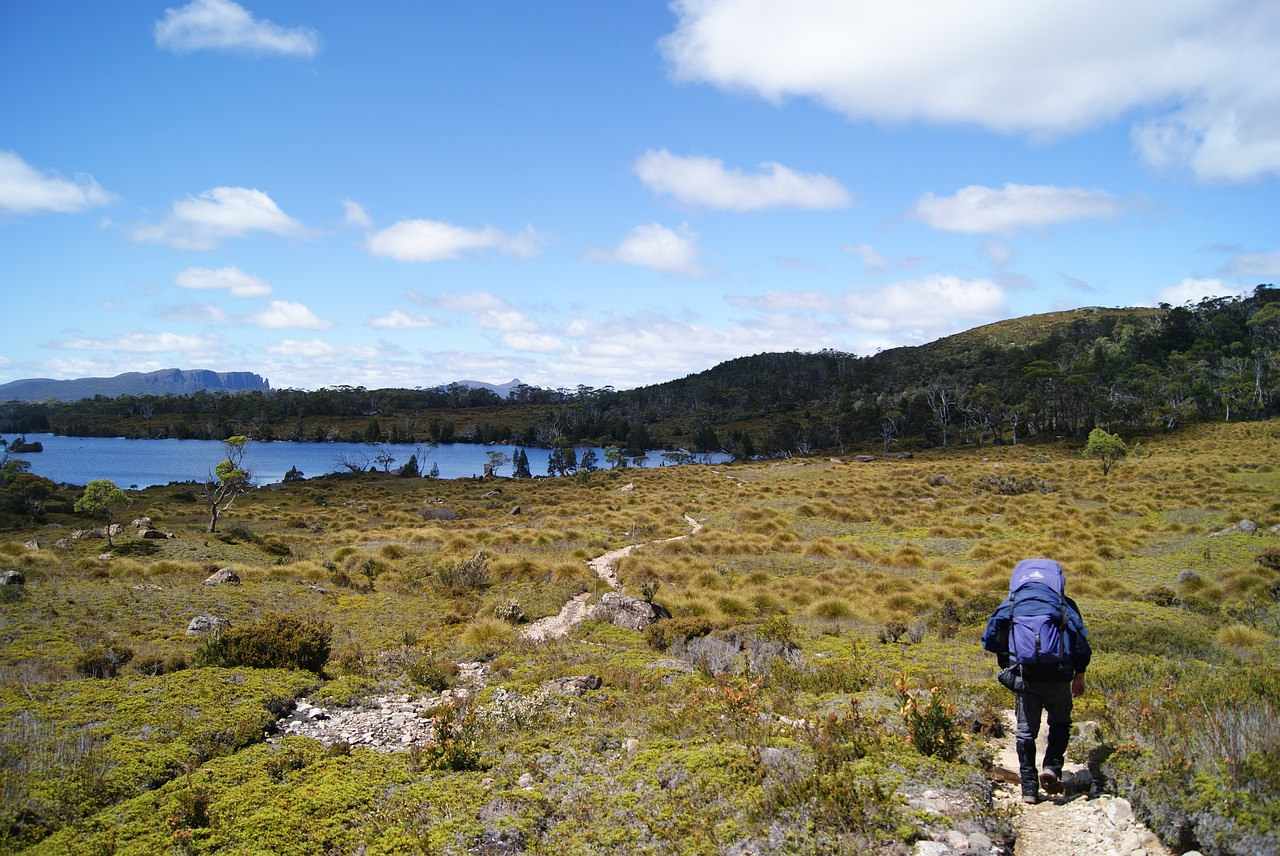 If you're a seasoned hiker, Tasmania's Overland track is an absolute must.