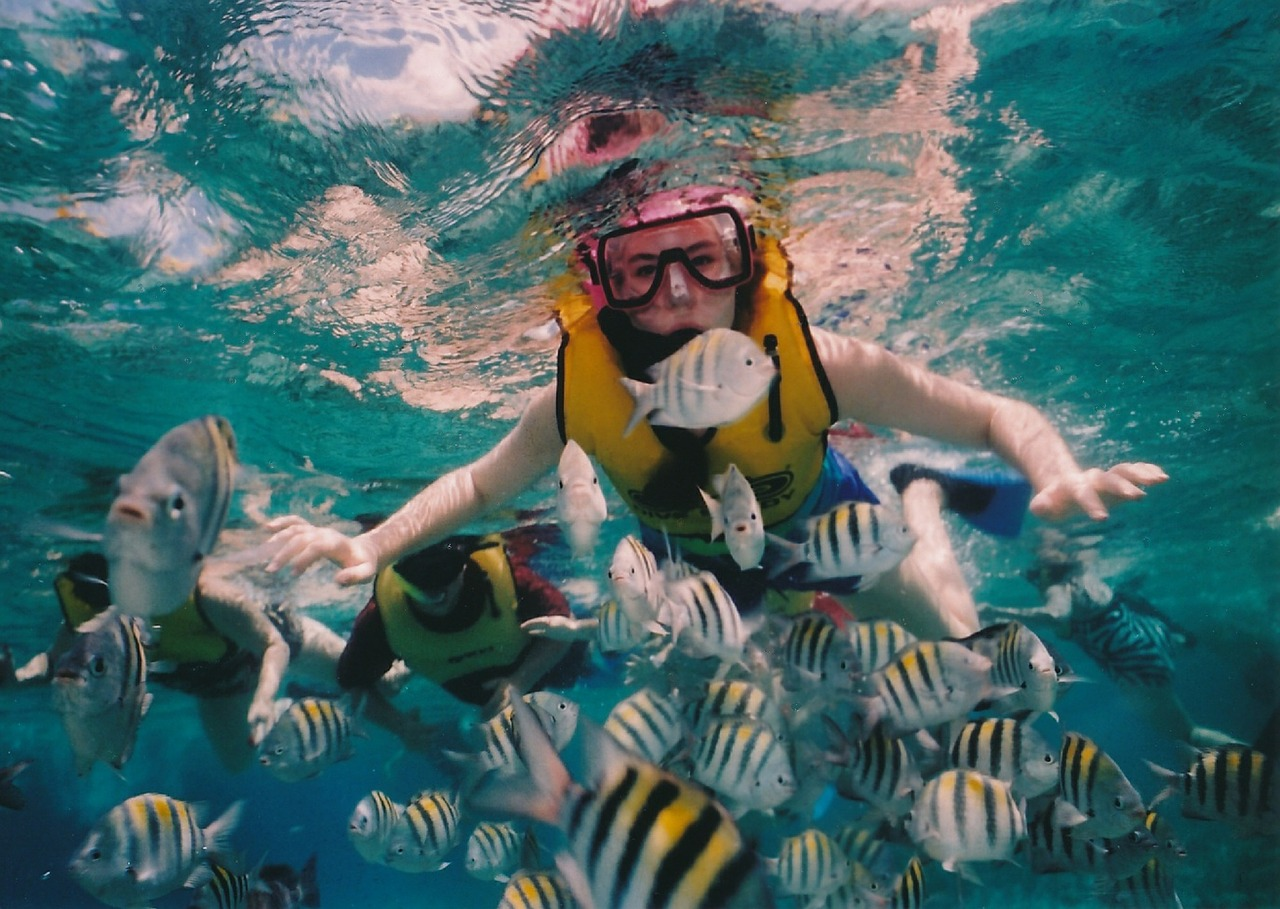 Hayman Island has direct access to the Great Barrier Reef where snorkelling is a must.
