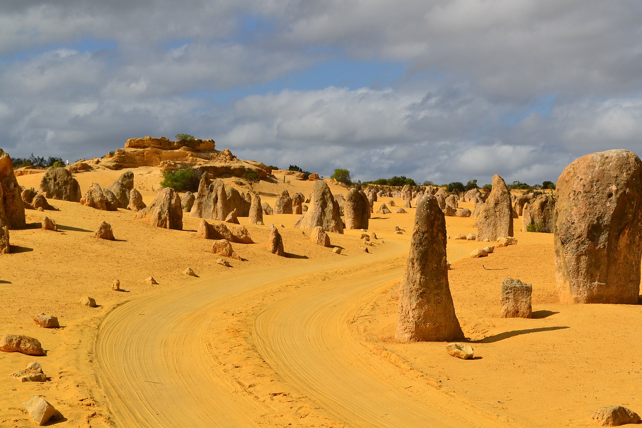 View the Pinnacles, ancient limestone pillars that rise from yellow dessert sands.