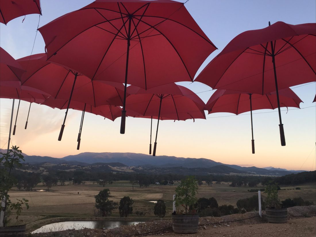 Una Bella Festa in King Valley at a vineyard